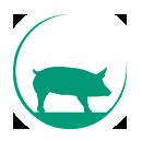 Varkenshouderij Het Condé, familie Bosch