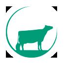 Melkveebedrijf en ijsboerderij De Rosahoeve, familie Kleverkamp