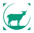 Biologisch melkgeitenbedrijf Reimert