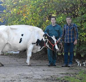Melkveebedrijf Erve Grutterink, familie Harmelink
