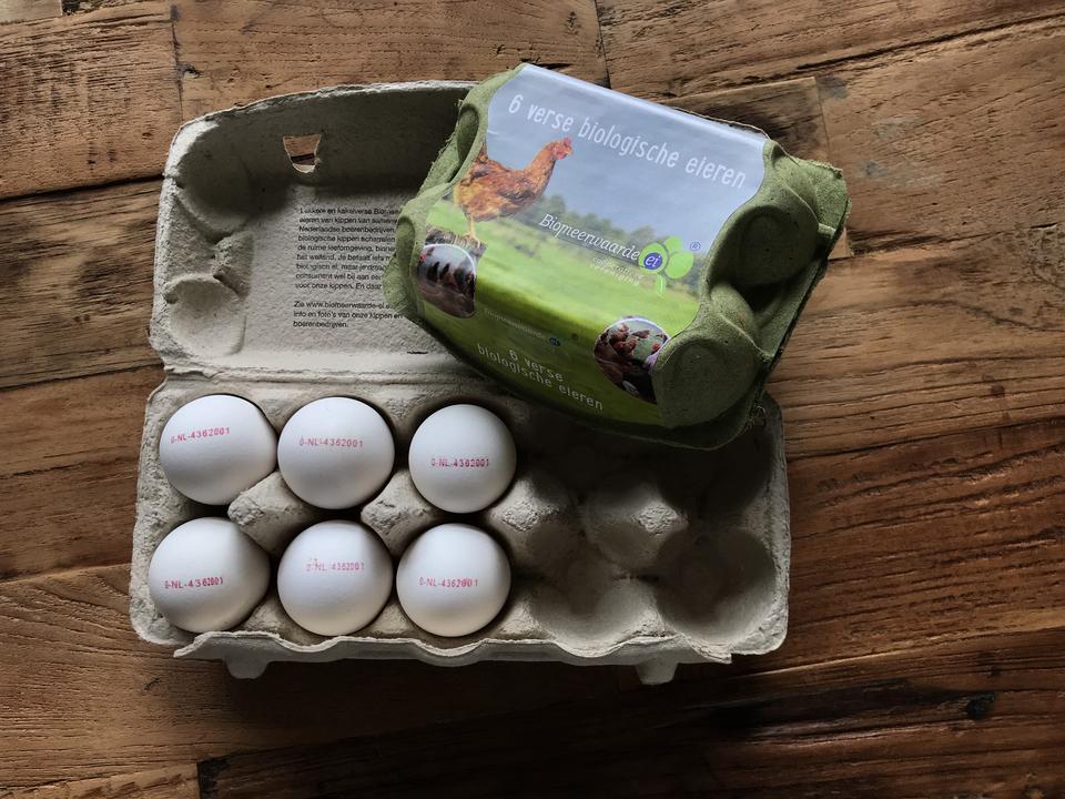 Ontwerp eierdoos