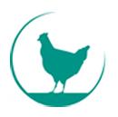 Legpluimveebedrijf en eierpakstation fam. v.d. Vis