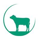Vleeskalverhouderij Mts. Frens- Stijnen