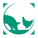 Pluimvee - en varkensbedrijf Drie-P B.V.