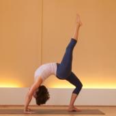 Masterclass voor yog...