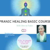 Pranic Healing Basic...