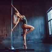 Workshop Exotic Pole...
