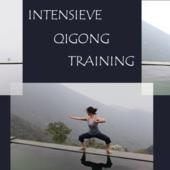 3 daagse training:  ...