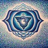 Vinyasa yoga (advanc...