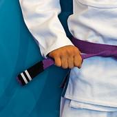 Purple Belt Phase II...